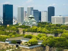 新緑の大阪城とビル群